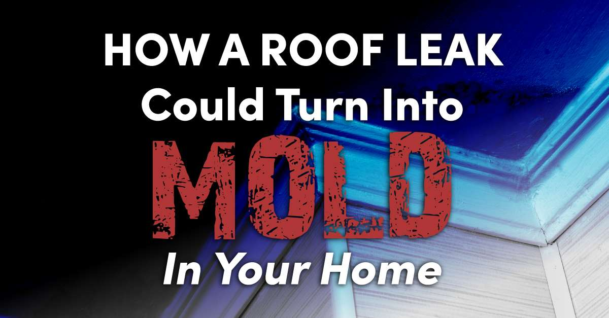 """house with the caption """"How A Roof Leak Could Turn Into Mold In Your Home"""""""